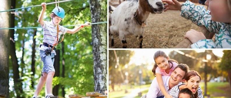 Arrangement Familienspezialangebot