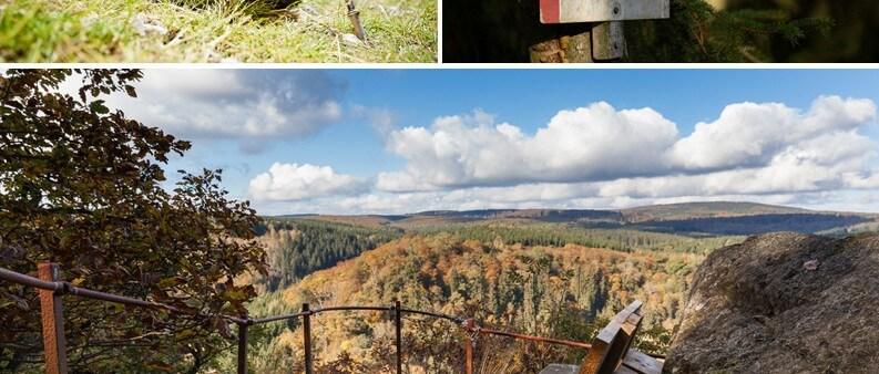Selkestieg Collage